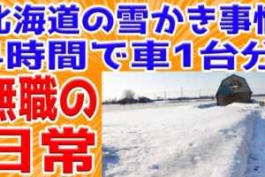 【無職の日常】北海道の雪かき事情