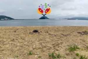 【4日目】無人島編【北海道 → 佐賀県旅行 (1ヶ月体験移住)】